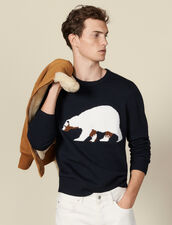 Sweater With Jacquard Bear : Sweaters & Cardigans color Navy Blue