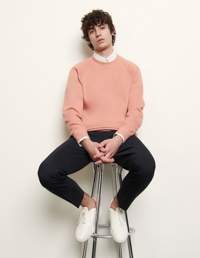 Plain Sweatshirt : Sweatshirts color Blue