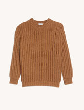 Chunky Knit Sweater : Sweaters & Cardigans color Camel