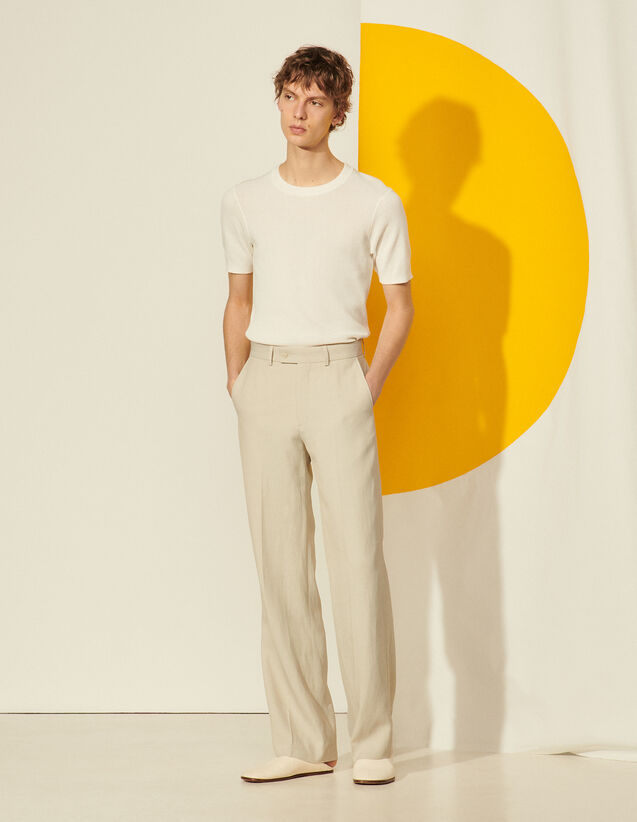 Linen Trousers : Pants & Shorts color Greige