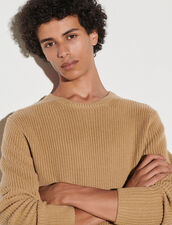 Wool Sweater : Sweaters & Cardigans color Camel